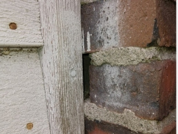 Mice Control and Exclusion in wood/bricks