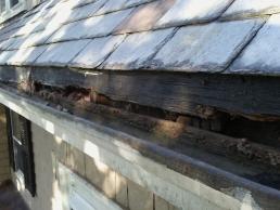 Soffit Repair outside