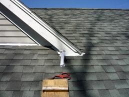 Bats in roof gutters