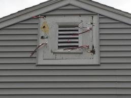 Woodpecker Control/Repair in attic